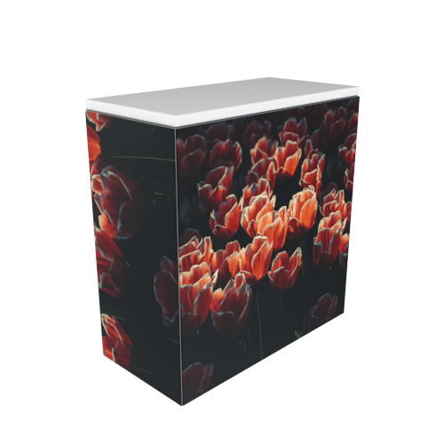 Eltex Cube counter